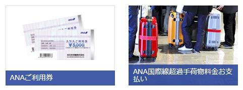 ANAご利用券と空港関連特典画像