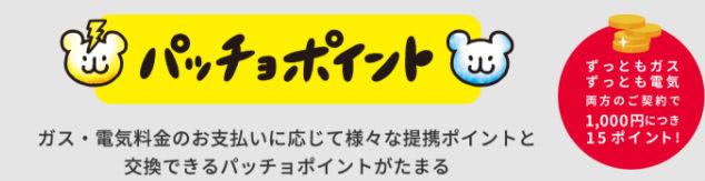 東京ガスパッチョポイント説明画像