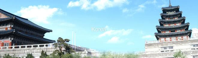 たびらば韓国